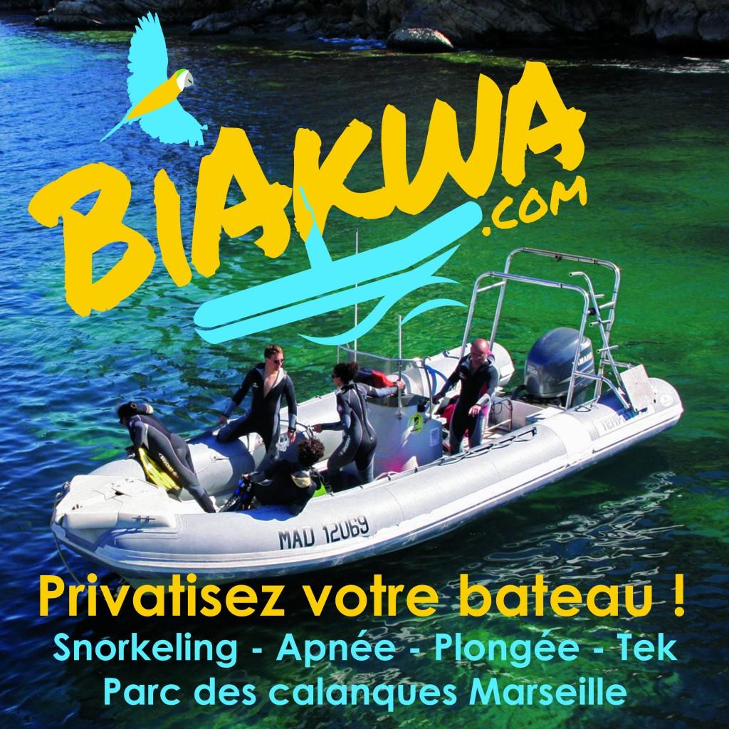 Mieux qu'une location de bateau Marseille !