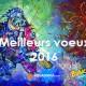 Meilleurs voeux de bonheurs et réussites pour 2016 !